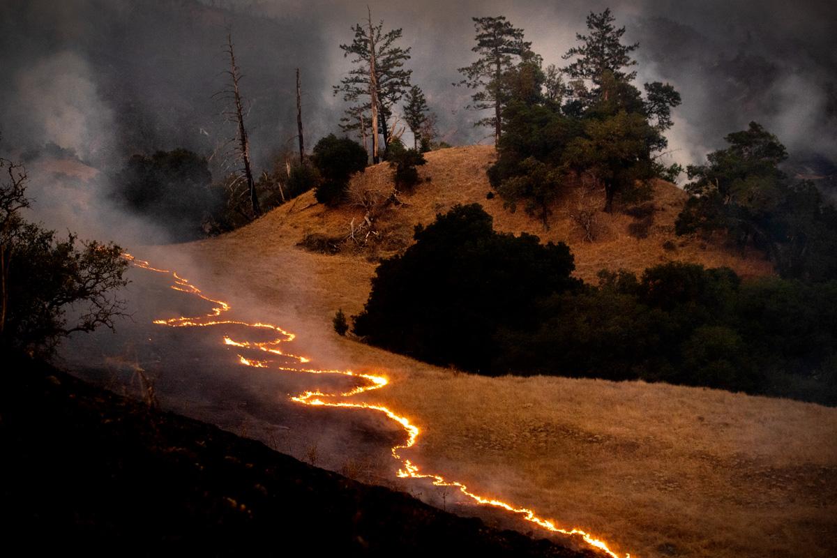 Jason Tse: Kincade Fire (Noah Berger)