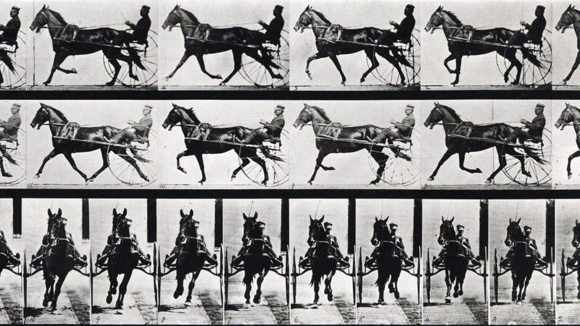 Eadweard Muybridge & the Motion Picture // Eadweard Muybridge & las películas