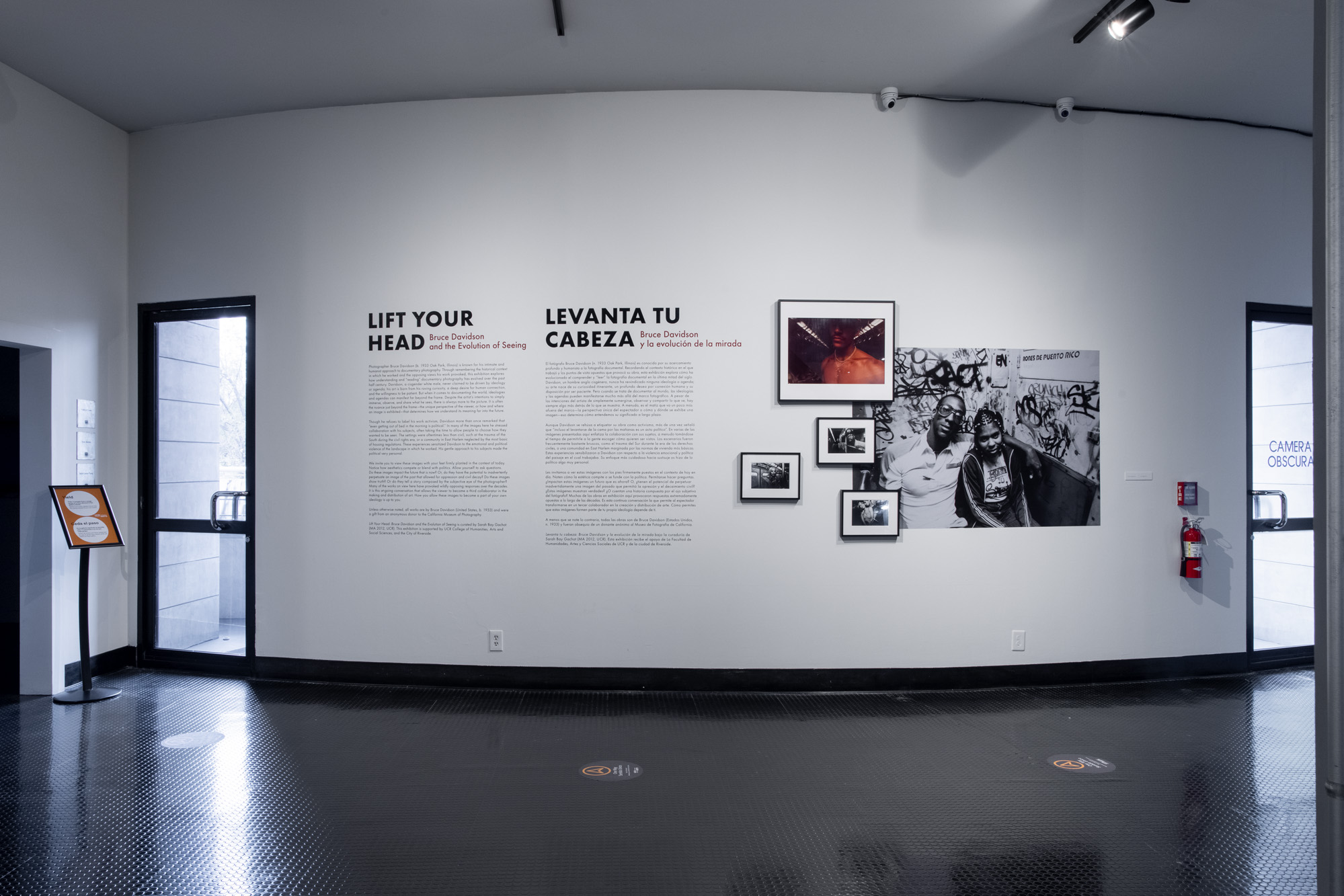 Curator-Led Tour: Bruce Davidson